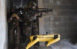 Cão-robô Spot fica sem bateria durante treinamento de combate