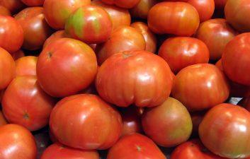 Para los genes del tomate, uno más uno no siempre es igual a dos