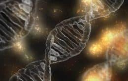 Cientistas fazem DNA humano parecer com DNA de mosquito