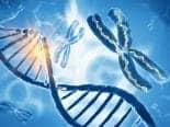 Exames podem mapear DNA e calcular risco de doenças como o câncer