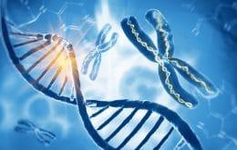 El estudio genético ayuda a explicar el origen de las hemorroides
