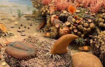 Las criaturas respiraban por las piernas y sobrevivían más que los dinosaurios, dice un estudio