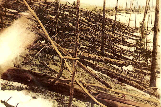 Foto feita em 1929 da região da Sibéria devastada pelo Evento de Tunguska em 1908. Créditos: Leonid Kulik