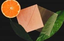 Como um derivado cítrico faz a madeira transparente 100% renovável