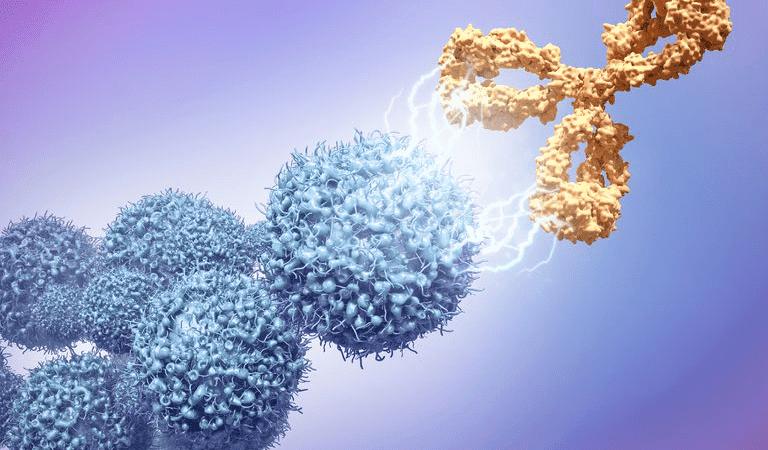 anticorpos monoclonais