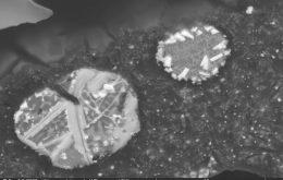 Partículas radioativas podem contaminar água e plantas de região da Austrália
