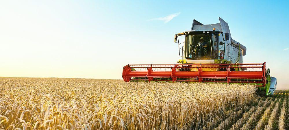 agricultura, solo, terra, terrestre