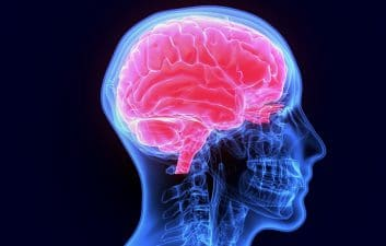 Mysterious brain disease affects 48 people in Canada