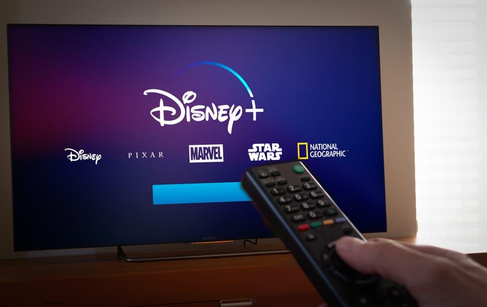 L'immagine mostra uno schermo TV con tutti i marchi di contenuti della Collezione Disney