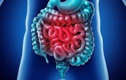 Mutação em proteína que combate vírus no intestino pode provocar doença rara