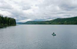 Fisherman encounters strange aquatic insect in British Columbia