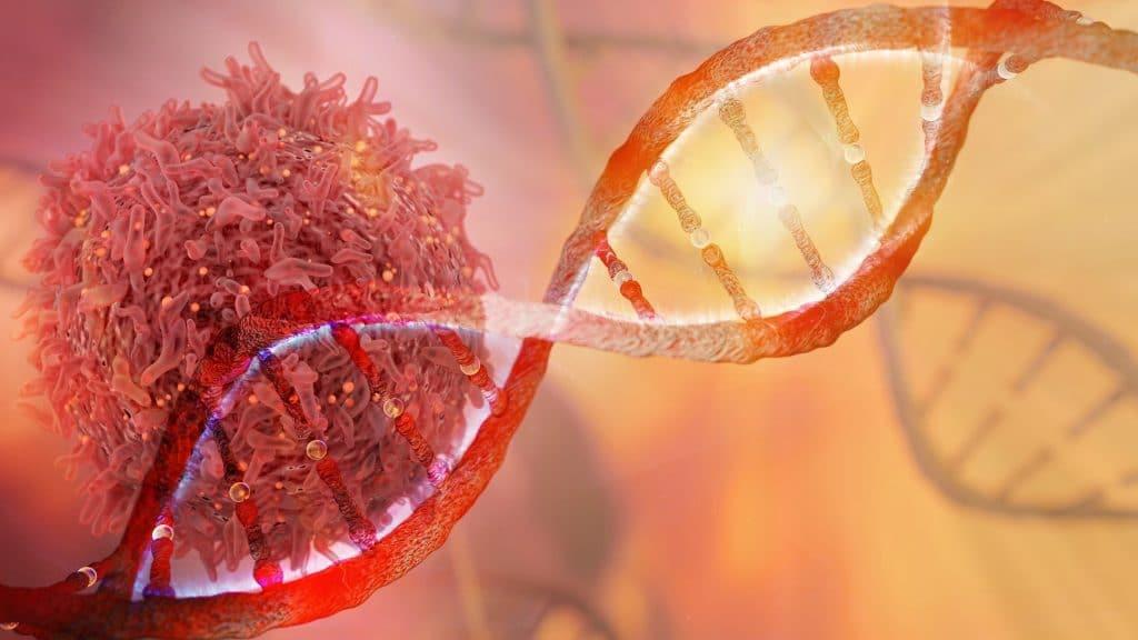 Câncer: pesquisadores descobrem como combater as células imunes ao tratamento