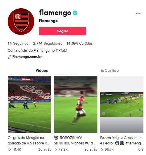 tiktok-flamengo Saiba quais são os times brasileiros de futebol mais seguidos no TikTok