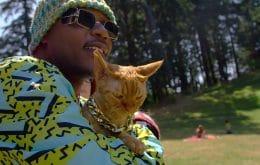 'Cat People': série da Netflix retrata apaixonados por gatos