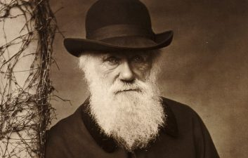 New Research Says Darwin Wrong About Sexual Selection