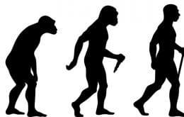 Nova espécie antiga de humano é descoberta na região do Levante, na Ásia
