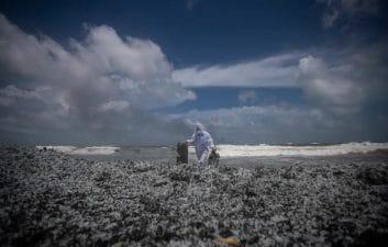 Incêndio em navio espalha 'neve plástica' na costa do Sri Lanka