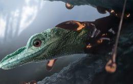 El dinosaurio más pequeño jamás encontrado es en realidad otro animal.