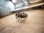 Cientistas trabalham em novo rover capaz de caminhar em Marte