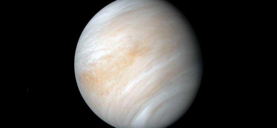 Venus-970x450