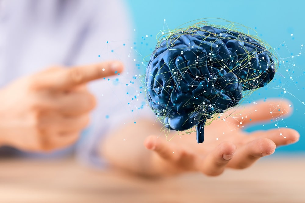 Cérebro. Imagem: Shutterstock/nepool