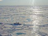 Aquecimento global pode já ser irreversível, alerta cientista