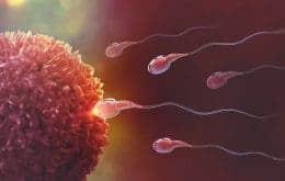 Você não foi o espermatozoide mais rápido!