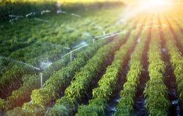 Irrigate: Startup ofrece riego inteligente y económico para pequeños agricultores
