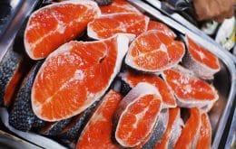 Norte-americanos vão comer salmão geneticamente modificado
