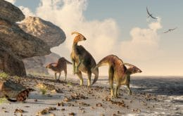 Earth's cooling may have led to the decline of dinosaurs, study indicates