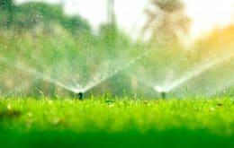 Startup oferece irrigação inteligente para agricultores familiares