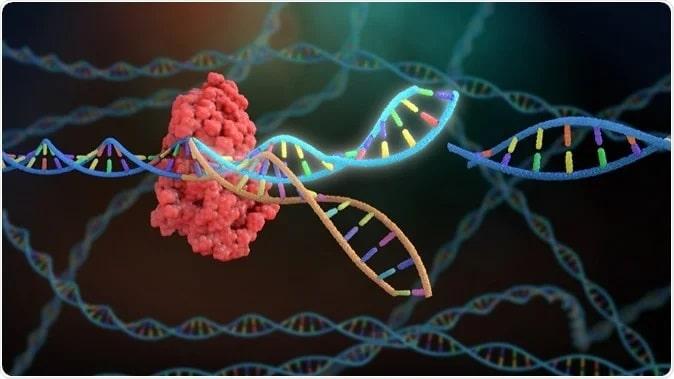 Simulação em 3D do CRISPR