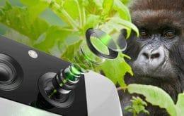 Gorilla Glass DX: Corning lança novo vidro para câmeras de smartphones; saiba qual será a primeira marca a usar