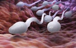 Pesquisadores querem usar ímãs nos testículos como método contraceptivo masculino