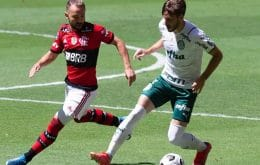 Palmeiras supera Flamengo e é o clube com mais visualizações no TikTok no primeiro semestre do ano