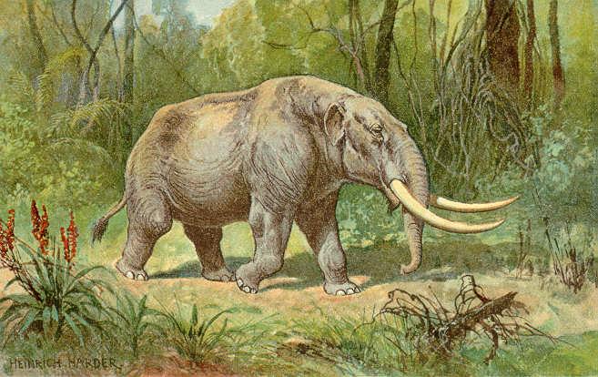 Ilustração de um mastodonte