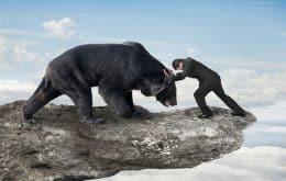 O que as mudanças climáticas podem gerar na relação entre humanos e animais selvagens?
