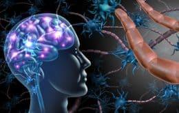 Deletar proteína específica do corpo pode ser tratamento para esclerose múltipla, diz estudo