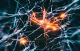 Cientistas encontram nova chave para o tratamento de doenças cerebrais