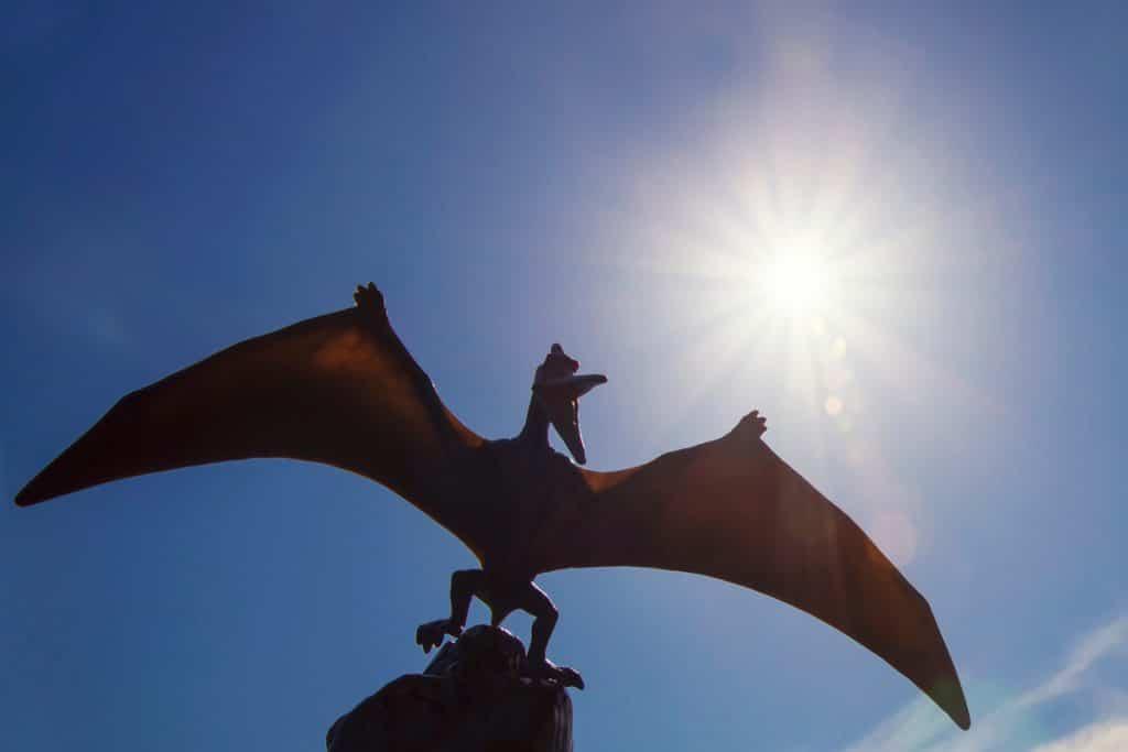 Imagem mostra um pteranodonte, réptil voador da classe dos pterossauros que, segundo cientistas, nasciam sabendo voar