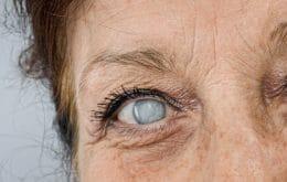 Cozinhar com carvão ou lenha pode provocar doenças oculares