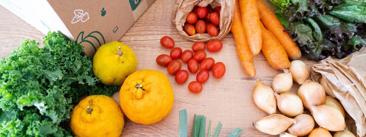 Imagem mostra caixa com o logo da startup Liv Up, ao redor estão vários alimentos in natura, como frutas e legumes