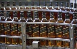El propietario de Johnnie Walker utilizará energía solar para producir whisky