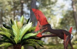 Fóssil de pterossauro mais bem conservado do Brasil quase foi contrabandeado
