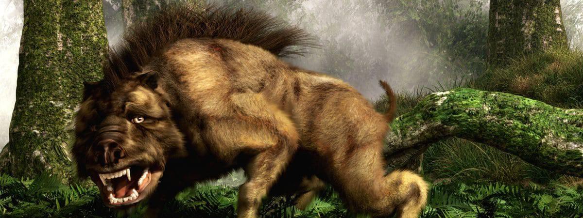 """Ilustração mostra um """"daeodon"""", um porco pré-histórico de grande porte"""