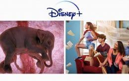 Disney Plus: lançamentos da semana (16 a 22 de agosto)