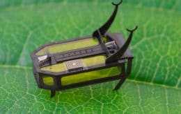 Pequeño y valiente: el mini robot inspirado en los escarabajos acabará en el Libro Guinness