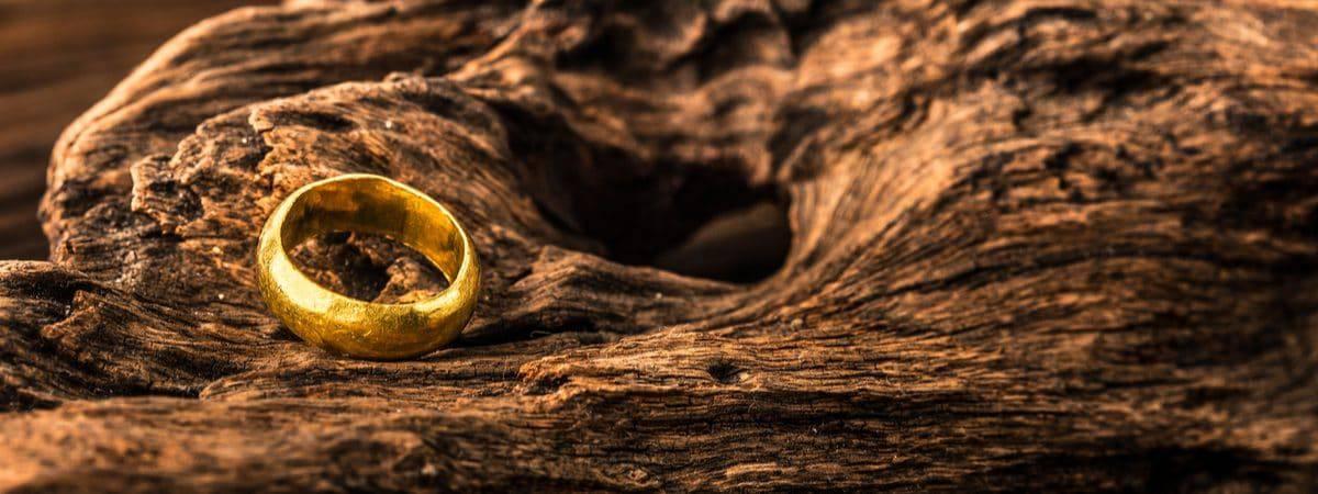 Imagem mostra um anel dourado posicionado no que parece ser o tronco de uma árvore