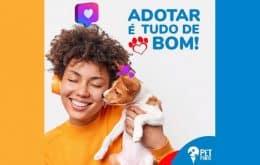 """""""Tinder"""" animal: PetPonto chega para facilitar a adoção de cães e gatos"""