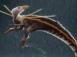 Alemanha se nega a devolver fóssil de dinossauro tirado irregularmente do Brasil